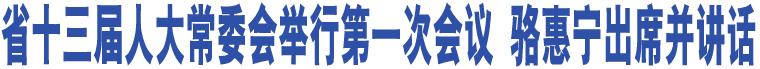 省十三届人大常委会举行第一次会议 骆惠宁出席并讲话