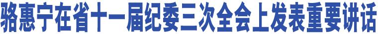 骆惠宁在省十一届纪委三次全会上发表重要讲话