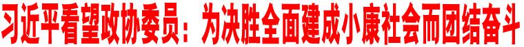 习近平看望政协委员:为决胜全面建成小康社会而团结奋斗