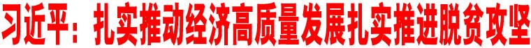习近平:扎实推动经济高质量发展扎实推进脱贫攻坚