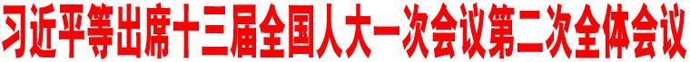 习近平等出席十三届全国人大一次会议第二次全体会议