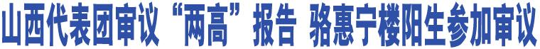 """山西代表团审议""""两高""""报告 骆惠宁楼阳生参加审议"""