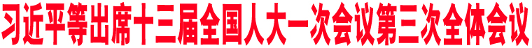 习近平等出席十三届全国人大一次会议第三次全体会议