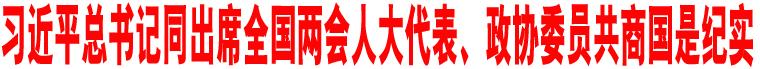习近平总书记同出席全国两会人大代表、政协委员共商国是纪实