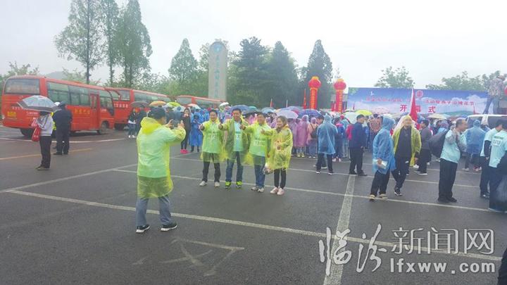 """河南燕子山""""槐花节"""" 万人徒步赏花海"""