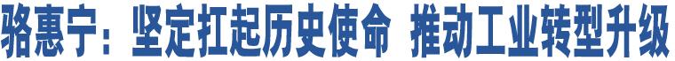 骆惠宁:坚定扛起历史使命 推动工业转型升级