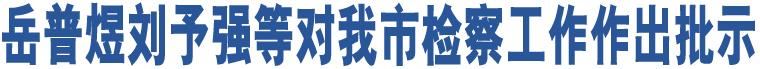 岳普煜刘予强等对我市检察工作作出批示