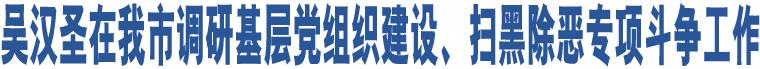 吴汉圣在我市调研基层党组织建设、扫黑除恶专项斗争工作