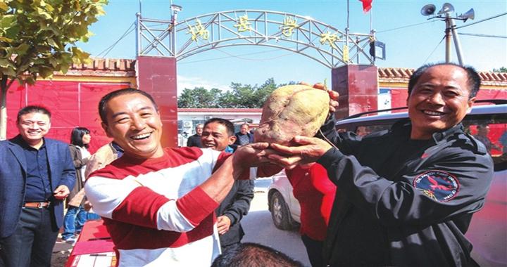 洪洞举办首届红薯文化节