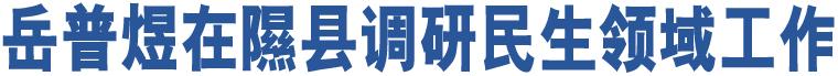 岳普煜在隰县调研民生领域工作