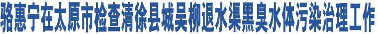 骆惠宁在太原市检查清徐县城吴柳退水渠黑臭水体污染治理工作