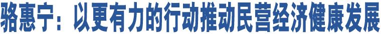 骆惠宁:以更有力的行动推动民营经济健康发展