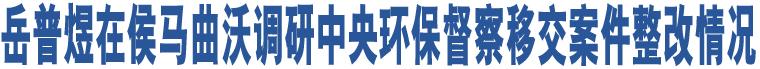 岳普煜在侯马曲沃调研中央环保督察移交案件整改情况