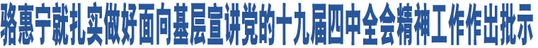 骆惠宁就扎实做好面向基层宣讲党的十九届四中全会精神工作作出批示