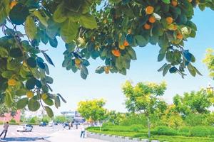 临汾市交通运输局:开展专项行动 整治违法行为