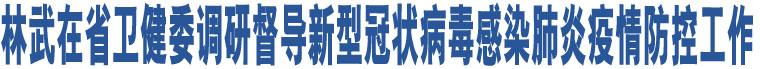 林武在省卫健委调研督导新型冠状病毒感染肺炎疫情防控工作