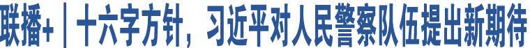 联播+|十六字方针,习近平对人民警察队伍提出新期待