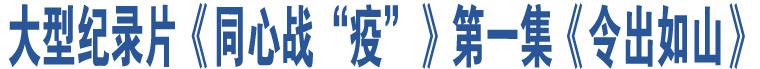 """大型纪录片《同心战""""疫""""》第一集《令出如山》"""