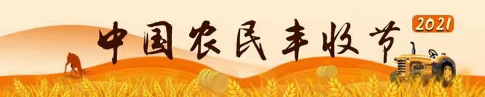 2021中国农民丰收节